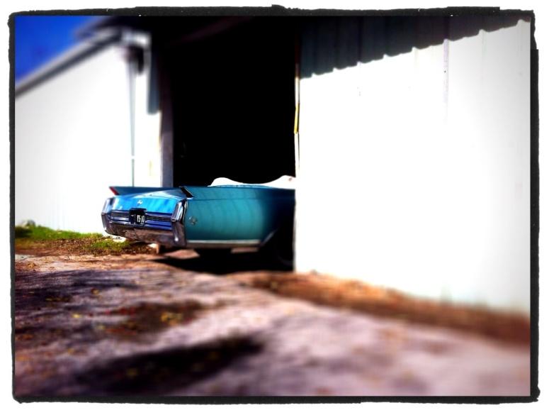 blue caddy 064