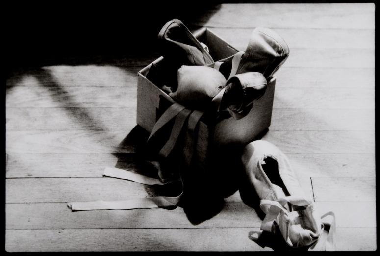 balletshoes 002